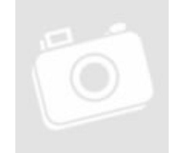 RENEGADE REN550S MKIII, 2 csatornás (2X275W,1X550W) autóerősítő
